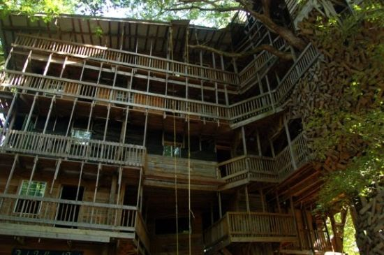 the largest tree house in the world construction began in 1993 now in 2011 it measures 10 stories